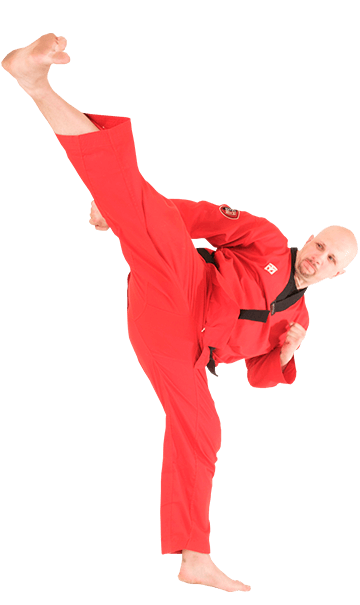 Synergy Martial Arts Owner